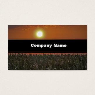 Cartão De Visitas Sun sobre um campo de milho