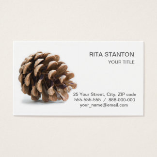 Cartão De Visitas Único pinecone