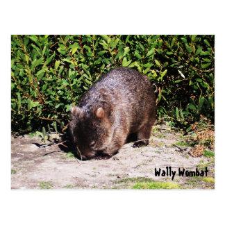 Cartão de Wally Wombat