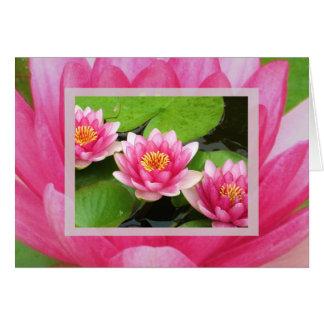 Cartão de Waterlilies
