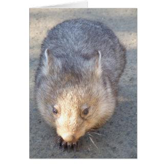 Cartão de Wombat