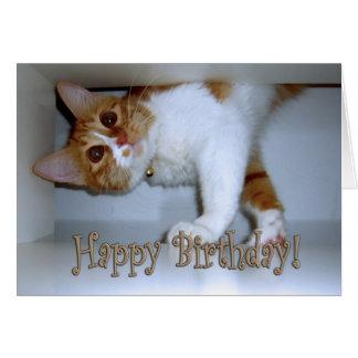 Cartão Deixar cair no gatinho - feliz aniversario!