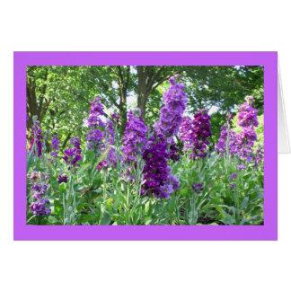 Cartão Delphinium roxo