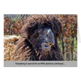 Cartão Dentista do camelo