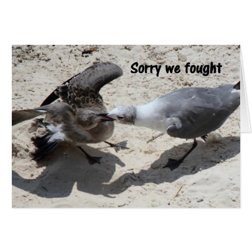 Cartão - desculpa