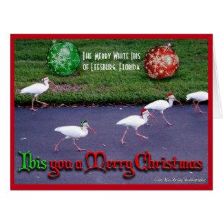 Cartão Desejando lhe o Feliz Natal