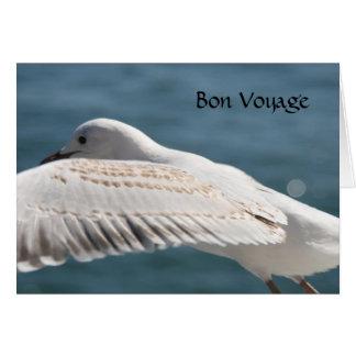 Cartão desejos da gaivota