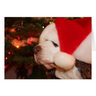 Cartão Desejos do feriado