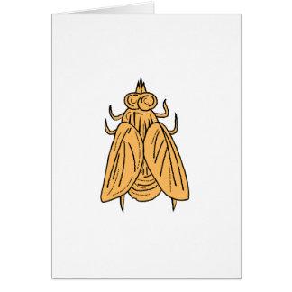 Cartão Desenho da opinião superior da mosca