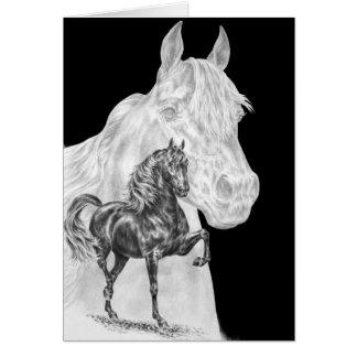 Cartão Desenho do espírito do cavalo de Morgan pela cisne