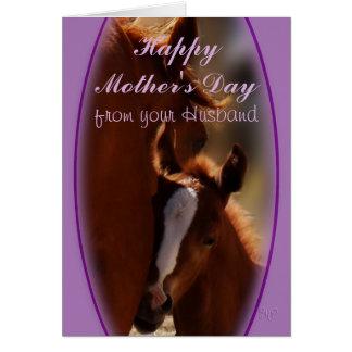 Cartão Dia das mães do cavalo o algum de ocasião do