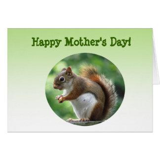 Cartão Dia das mães do esquilo vermelho