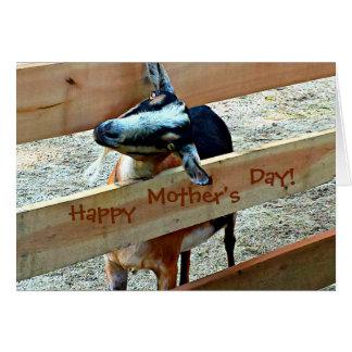 Cartão Dia das mães feliz do miúdo adorável (cabra)
