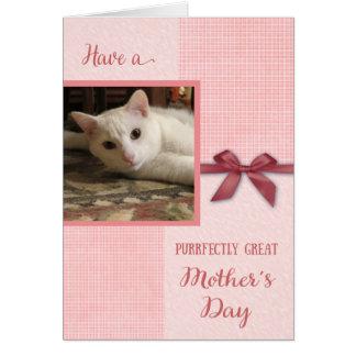 Cartão Dia das mães, grande mamã de Purrrfectly, foto