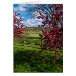 Cartão Dia de primavera em Rivercut