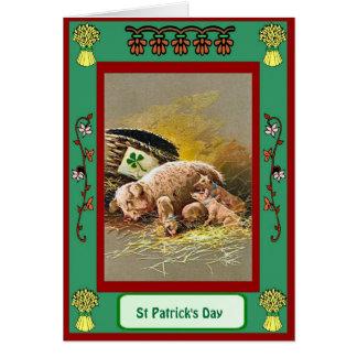 Cartão Dia de São Patrício, maca dos porcos