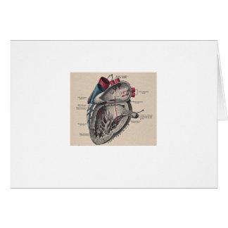 Cartão Diagrama humano antigo da anatomia do coração