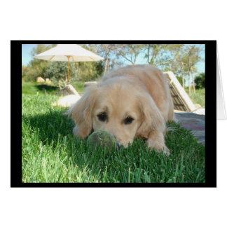 Cartão Dias de cão do TESS