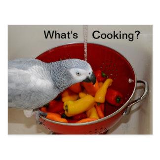 Cartão do ajudante da cozinha do cozinhar do cinza