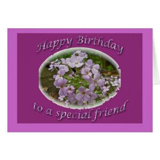 Cartão do amigo do aniversário do Phlox de