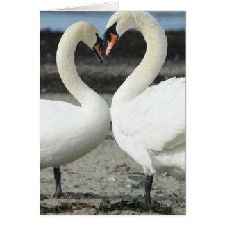 Cartão do amor da cisne