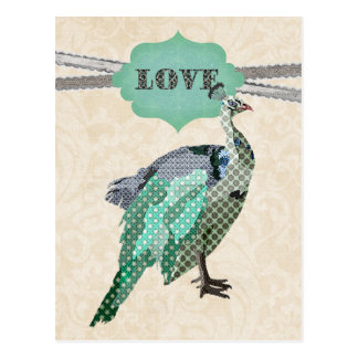Cartão do amor do pavão   de Celeste Cartão Postal
