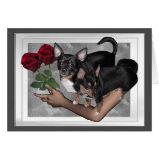 Cartão do amor dos rosas da chihuahua