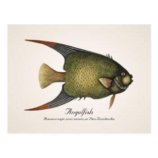 Cartão do Angelfish - estilo II