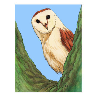 cartão do animal da coruja da neve