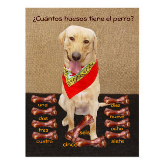 Cartão do animal de estimação engraçado & auxílio