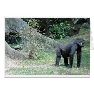 Cartão do animal do gorila do jardim zoológico