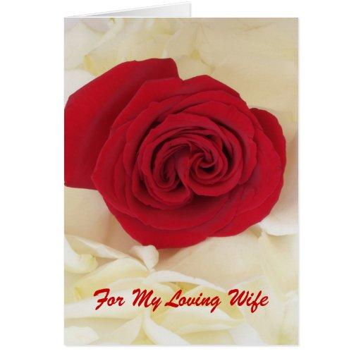 Cartão do aniversário da esposa da rosa vermelha