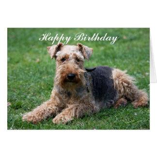Cartão do aniversário da foto do cão do terrier de