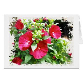 Cartão do aniversário do hibiscus