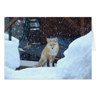 Cartão do anjo da neve