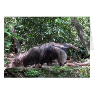 Cartão do Anteater