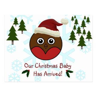 Cartão do anúncio do nascimento do Natal do pisco