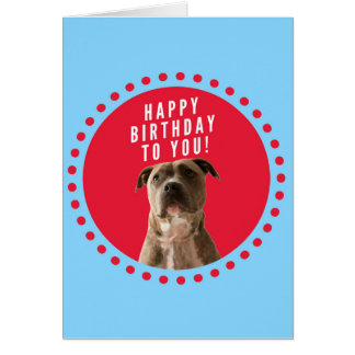 Cartão do azul do feliz aniversario do cão de