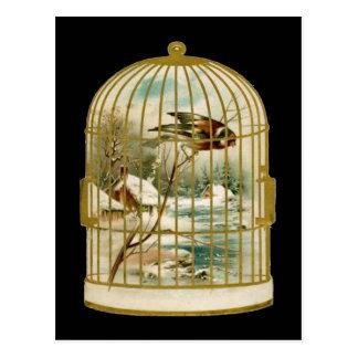 Cartão do Birdcage da cena do inverno