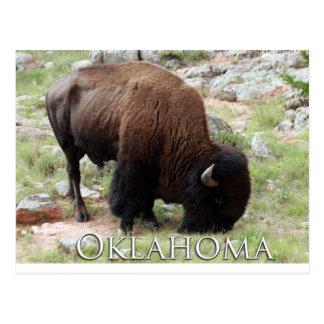 Cartão do bisonte de Oklahoma