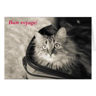 Cartão do bon voyage com gato