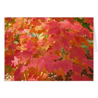 Cartão do bordo do outono