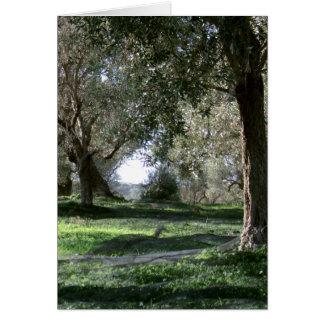 Cartão do bosque verde-oliva