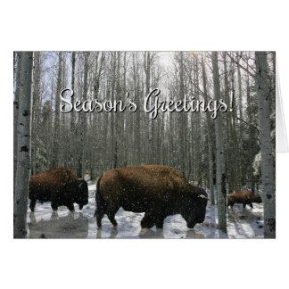Cartão do búfalo dos cumprimentos da estação do