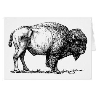 Cartão do búfalo ou do bisonte