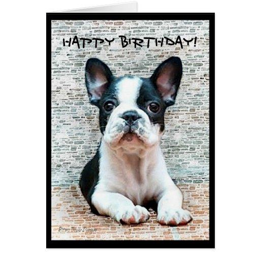Cartão do buldogue francês de feliz aniversario