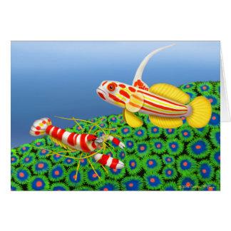 Cartão do camarão do góbio & de pistola de Yasha