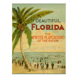 Cartão do campo de jogos do inverno de Florida do