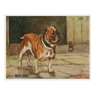 Cartão do cão com o cão resistente de Bull