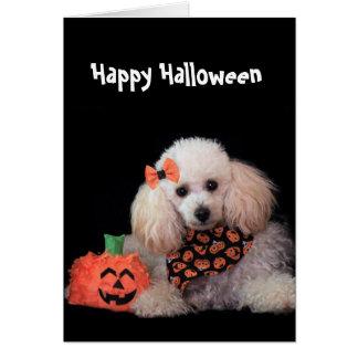 Cartão do cão de caniche do Dia das Bruxas